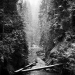 landscape photography nature sächsische schweiz black and white