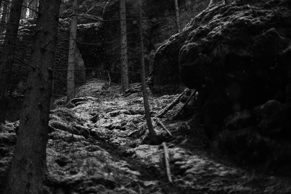 landscape photography nature sächsische schweiz black and white