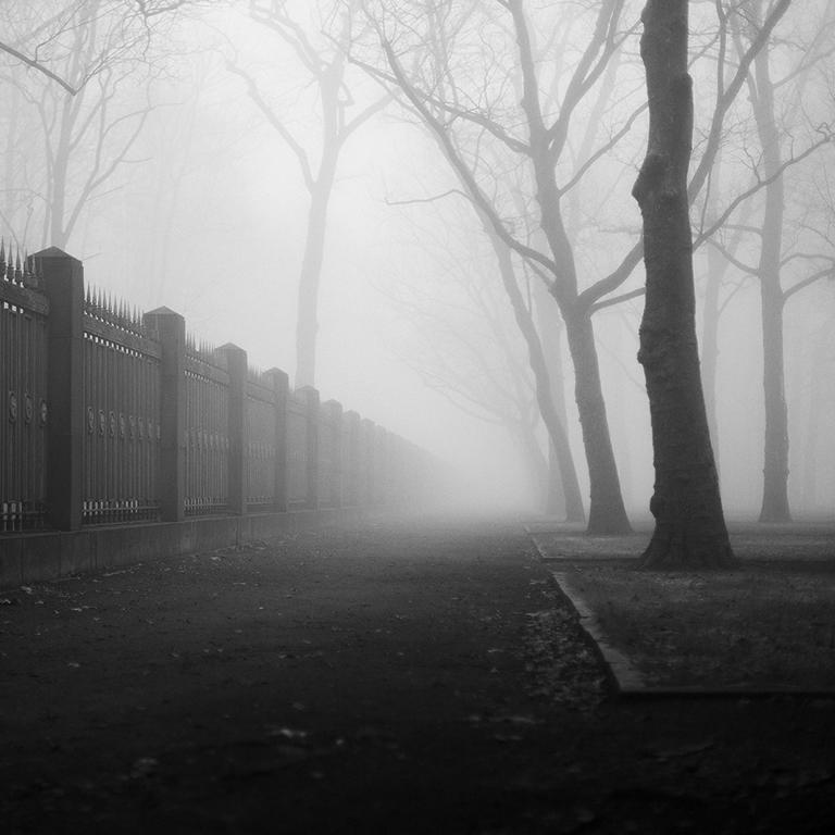 photography berlin landscape city nature fog atmosphere Treptow