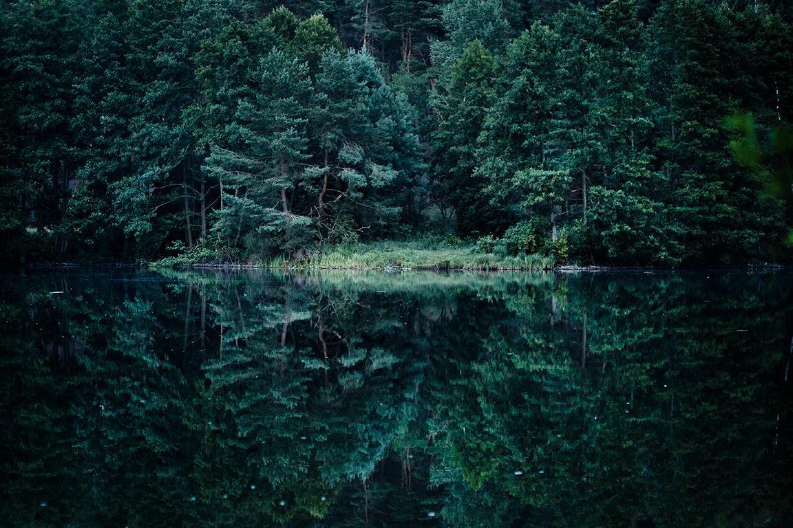 Naturfotografie von Fotografin Caroline Wimmer Seen in Berlin und Brandenburg